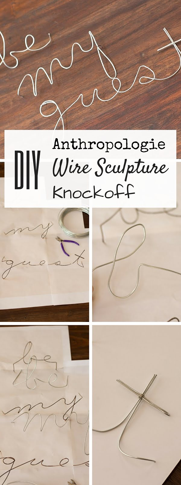 Check out the tutorial:  Wire Sculpture