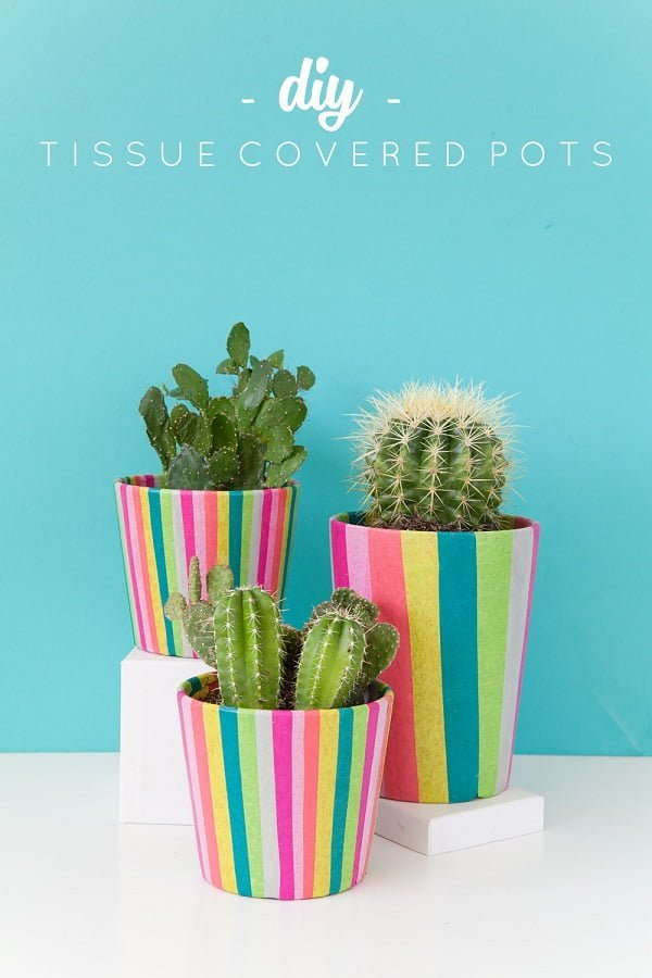 How to make #DIY tissue paper cover planter pots. Great and easy idea! #homedecorideas