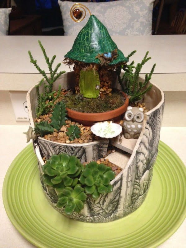 Mini Garden #homedecor