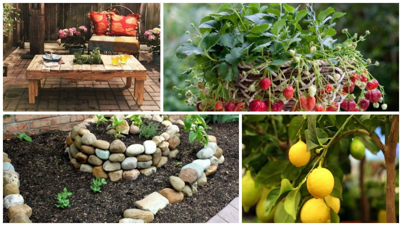 10 easy diy small garden ideas for tiny spaces on a budget