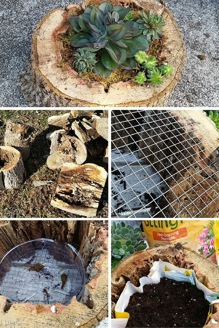 Check out the tutorial: DIY Tree Trunk Planter