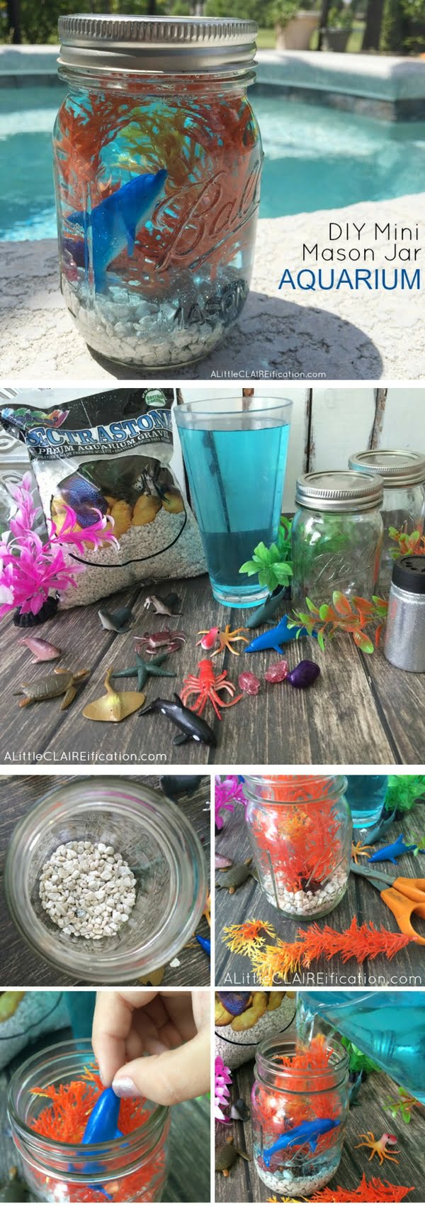 How to make  Mason Jar Mini Aquarium
