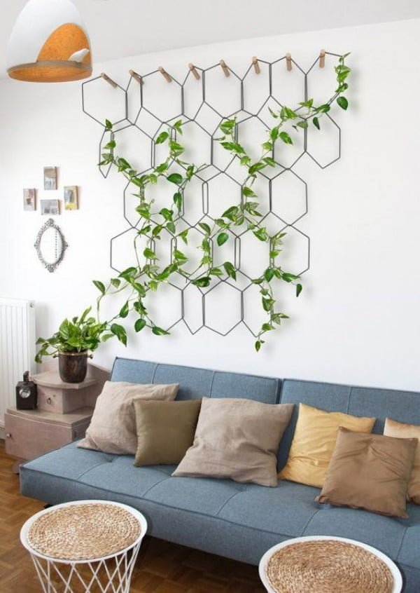 Love this indoor trellis structure for vine plants