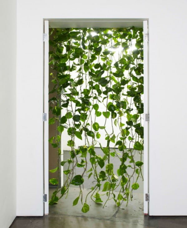 Love the idea to create a door curtain from vine