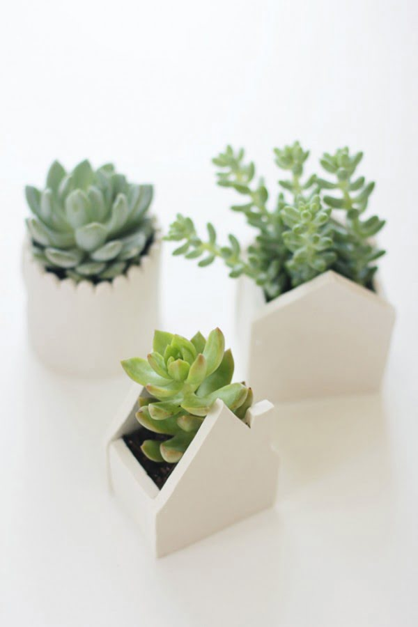 Check out how to make you own DIY succulent planters from clay