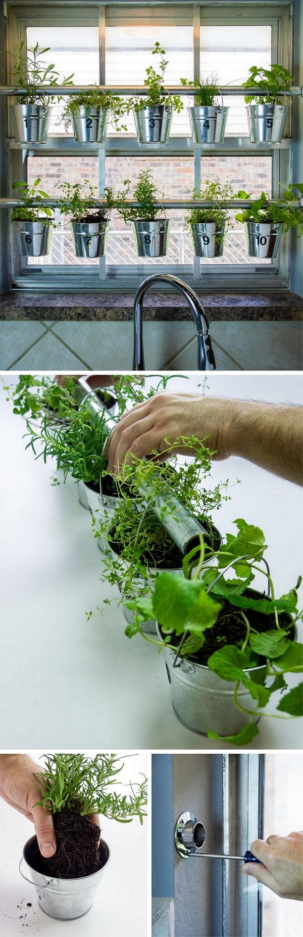 How to build a DIY window mounted herb garden