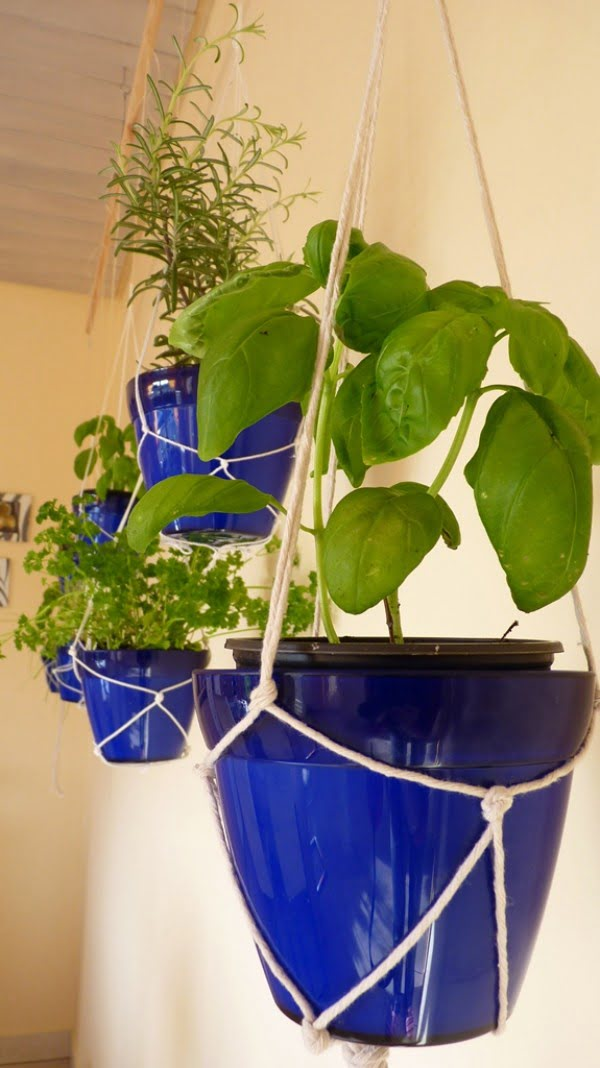 How to make a DIY macrame hanging herb garden