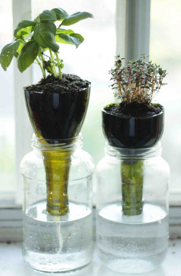 Check out how to make this DIY self watering planter
