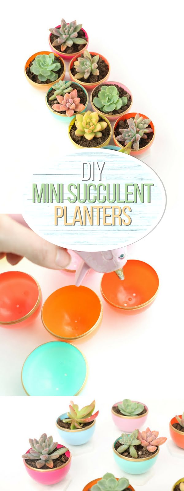 Check out how to make DIY mini succulent pots