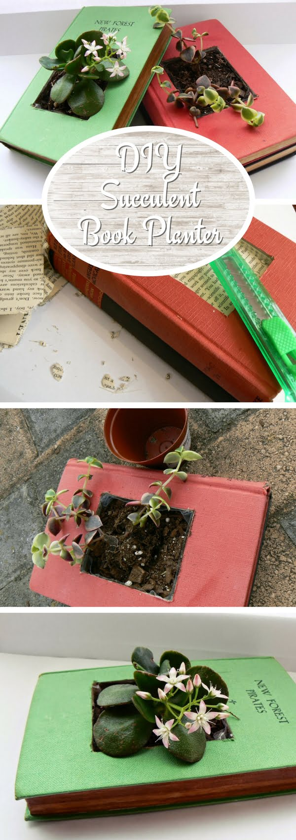 Check out how to make a DIY succulent book planter