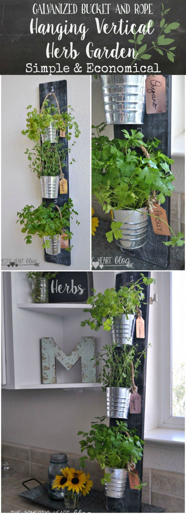 How to build a DIY hanging vertical herb garden form galvanized buckets and rope