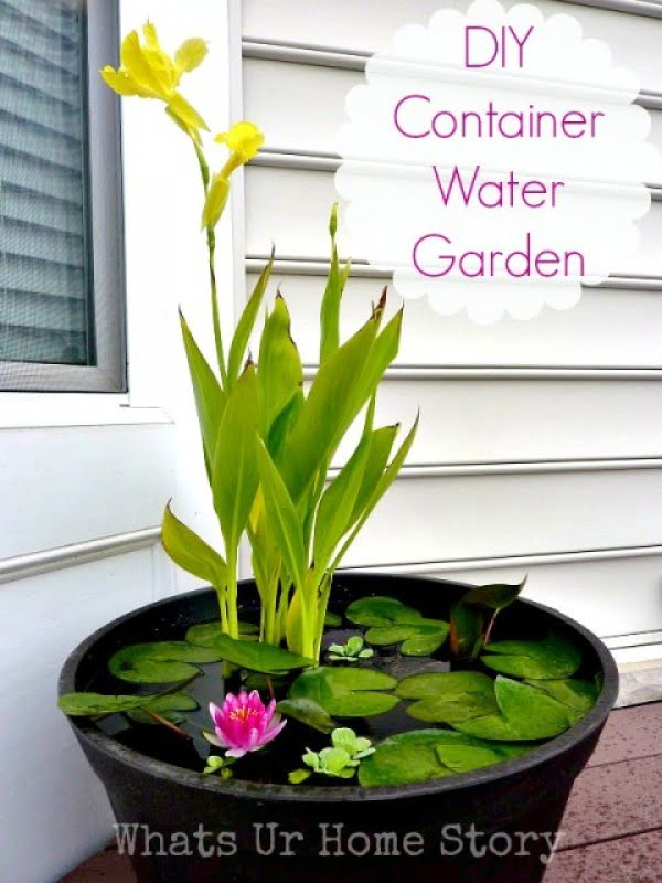 Check out how to make a DIY container water garden
