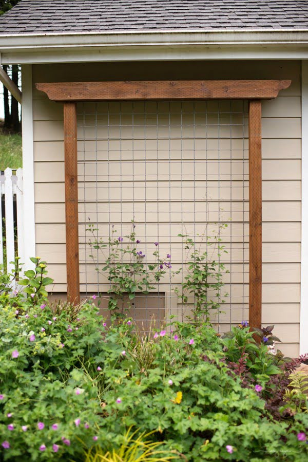 Check out how to build an easy DIY trellis from cattle fencing for your backyard