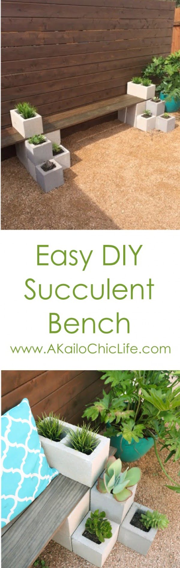 Check out how to build a DIY outdoor succulent bench