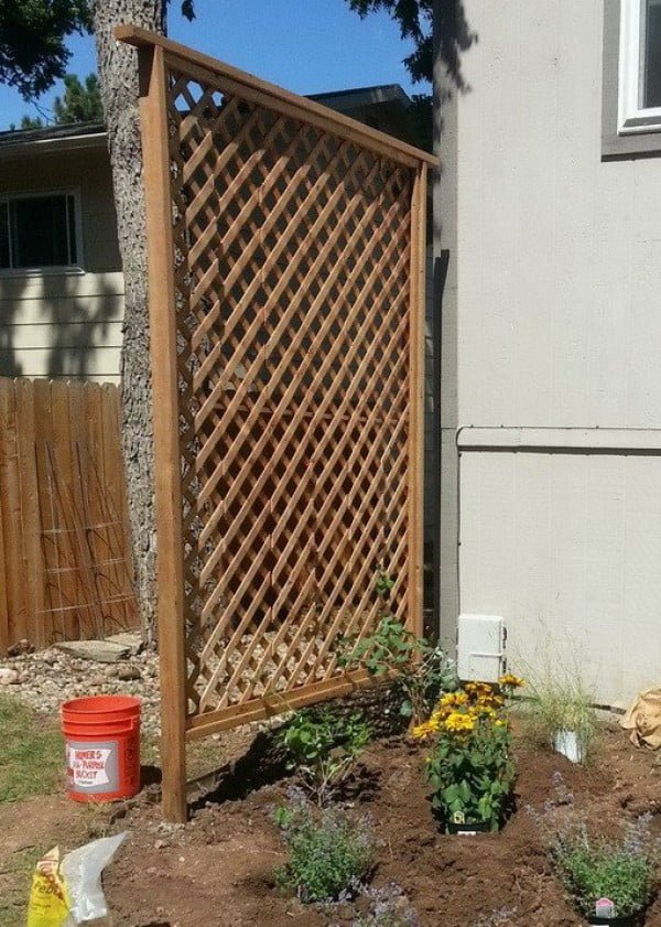 Check out how to build a DIY trellis for more privacy in your backyard