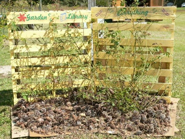 Check out how to build an easy DIY rose trellis from pallets