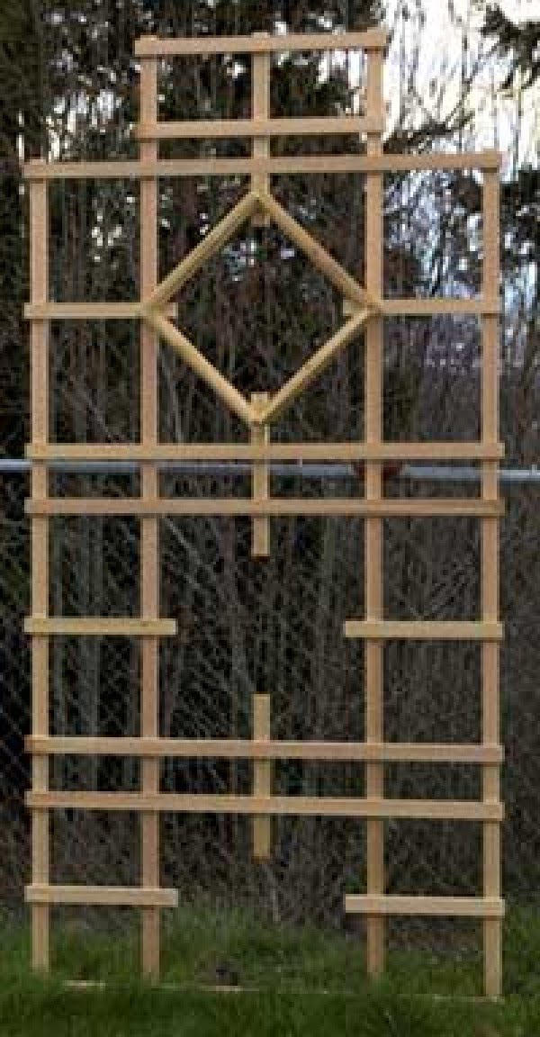Check out the tutorial on how to build a simple and easy DIY trellis for your garden
