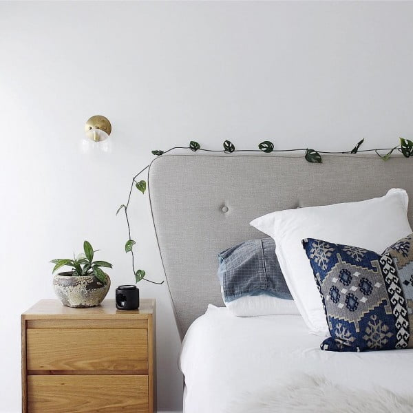 #Bedroom decor idea with a Swiss Cheese plant. So simple and so lovely! #homedecor