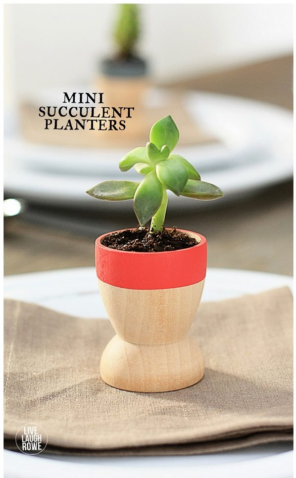 Check out this easy idea on how to make  mini succulent planters that you can make and