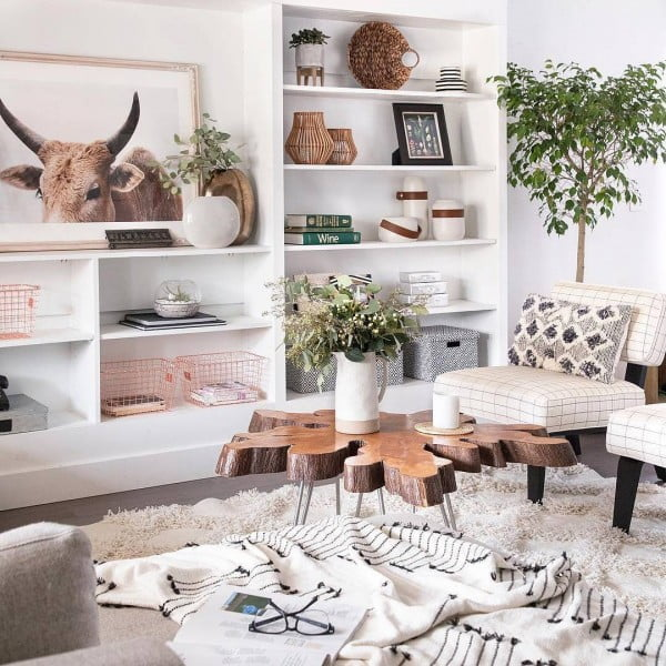 Rustic Living Room Idea