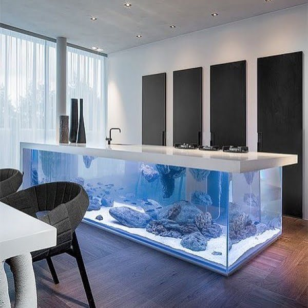 Check out this unusual kitchen design with aquarium counters. Love it!
