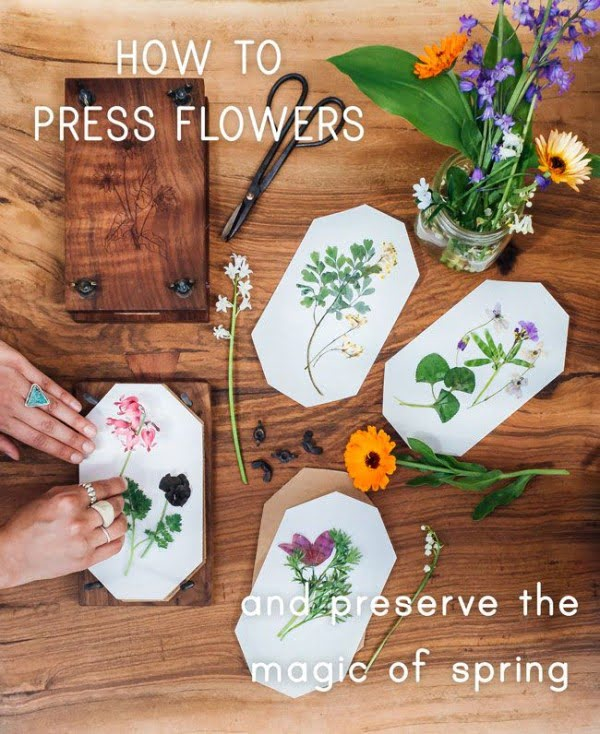 You have to see this tutorial on how to make #DIY pressed flowers for spring decor #HomeDecorIdeas