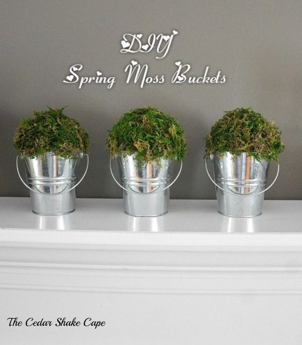 You have to see this tutorial on how to make #DIY moss buckets for spring decor #HomeDecorIdeas