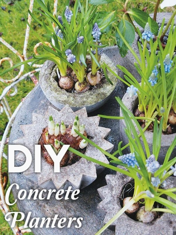 Great idea! Check out the tutorial on how to make  whimsical concrete garden planters