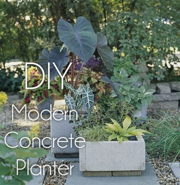 Great idea! Check out the tutorial on how to make  modern concrete garden planters
