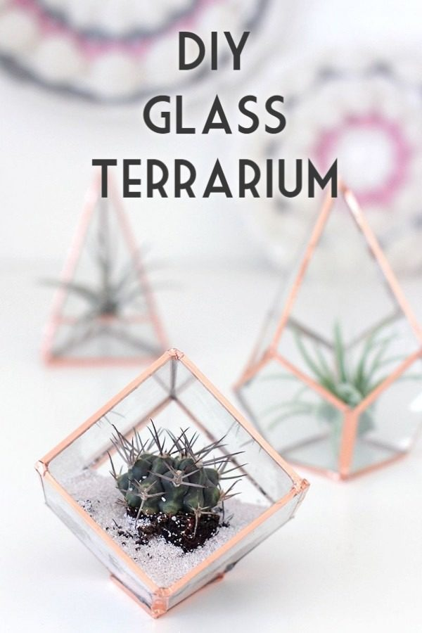 Check out the tutorial on how to make  class terrariums. Looks easy enough!