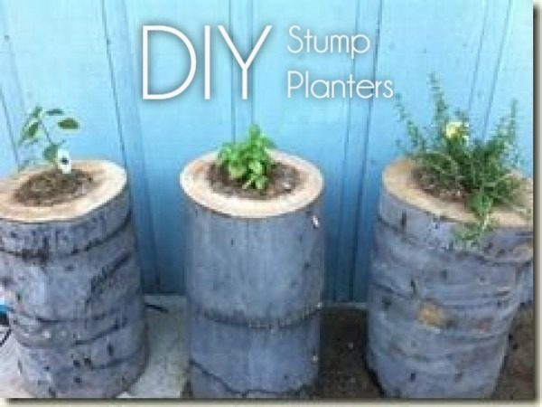 Great idea! Check out the tutorial on how to make a  tree stump garden planter