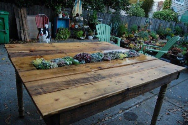 Great idea! Check out the tutorial on how to make a #DIY outdoor succulent pallet table. #HomeDecorIdeas