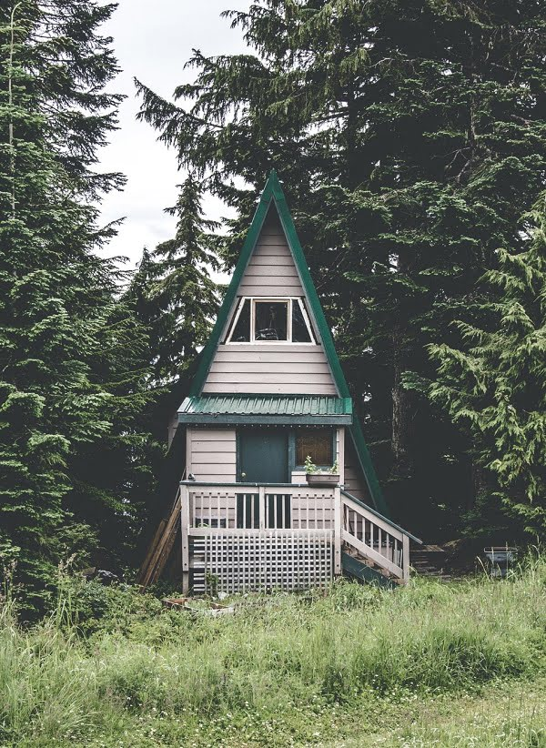 Cool tiny cabin in the woods