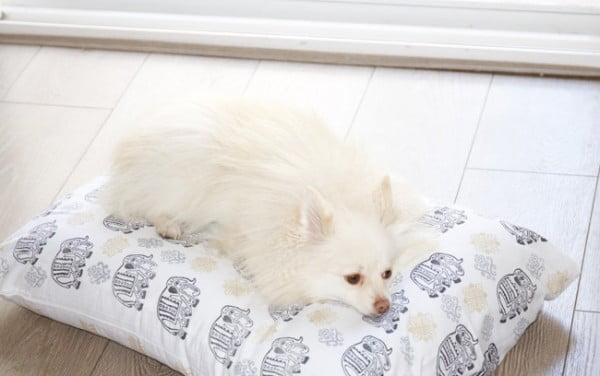 Custom Fabric  Dog Bed