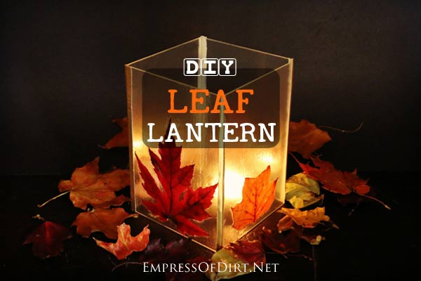How to make  leaf lanterns