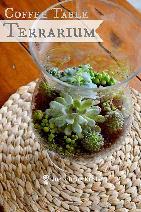 #DIY Coffee Table Centerpiece Succulent Terrarium #homedecor