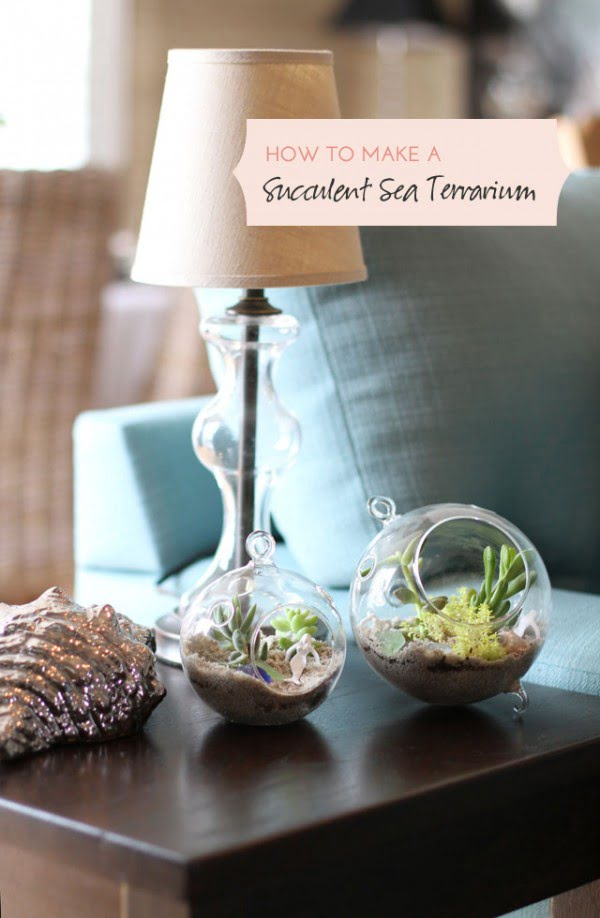 #DIY Succulent Sea Terrarium #homedecor