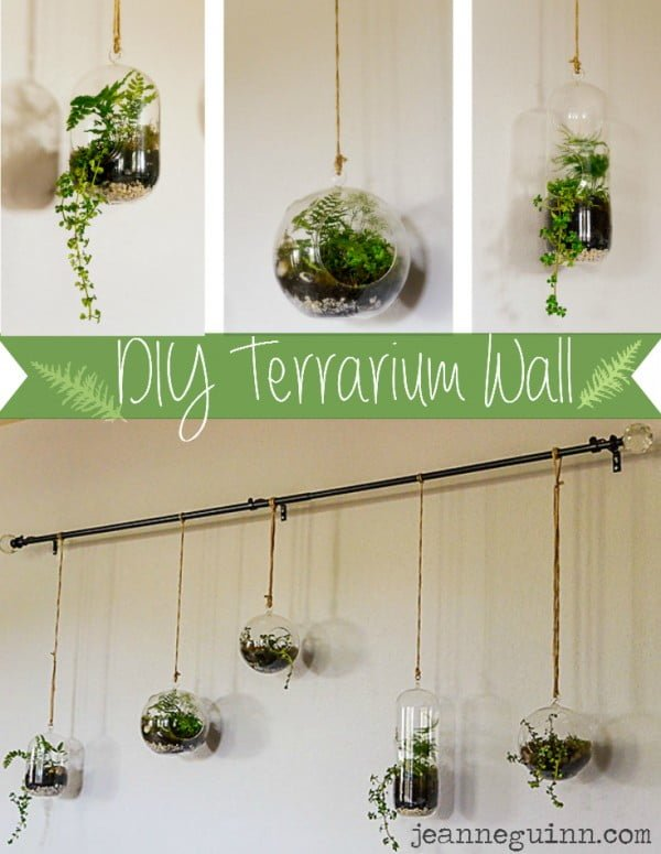 #DIY Hanging Succulent Terrarium Wall #homedecor
