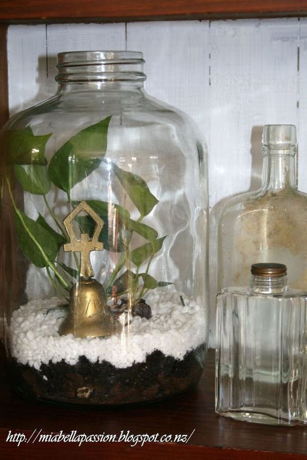 #DIY Bottle Succulent Terrarium #homedecor