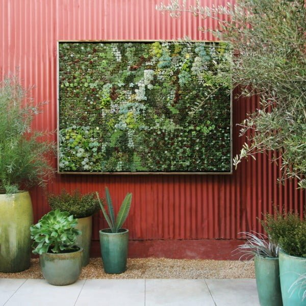 Outdoor Succulent Wall Garden