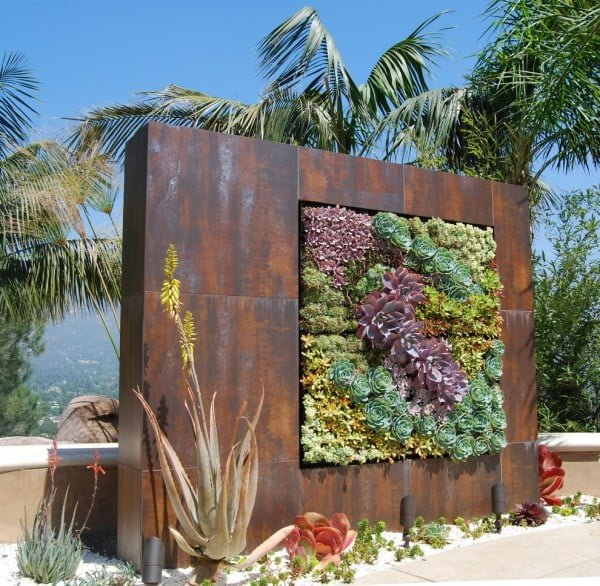 Succulent Garden Statement Wall