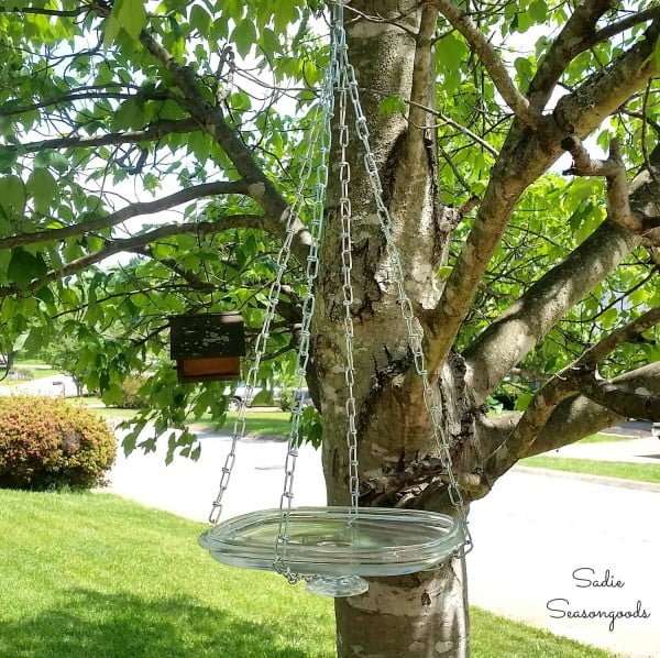 DIY Bird Waterer and Bath with a Repurposed Glass Lid