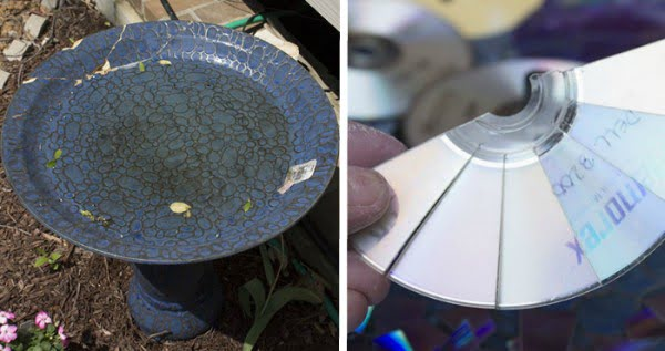 Woman Finds A Giant Crack In Her Birdbath — And Has A Brilliant Idea To Fix it