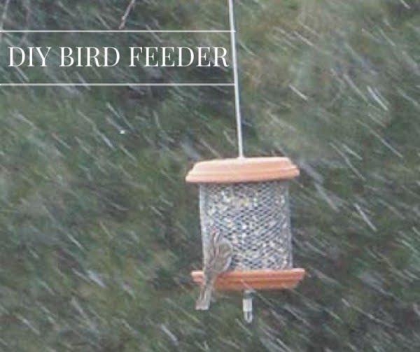 Bird Feeder DIY Craft