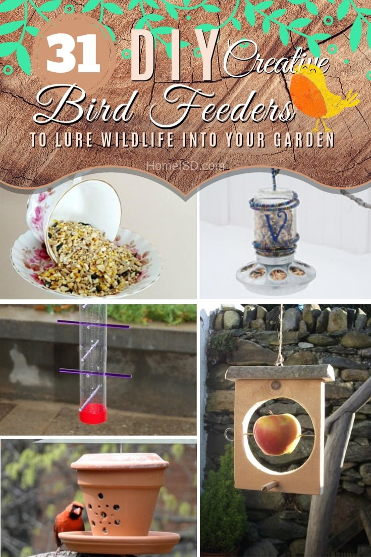Lure wildlife into your garden and backyard with these creative DIY bird feeder ideas. Great list! #DIY #outdoors #garden #backyard