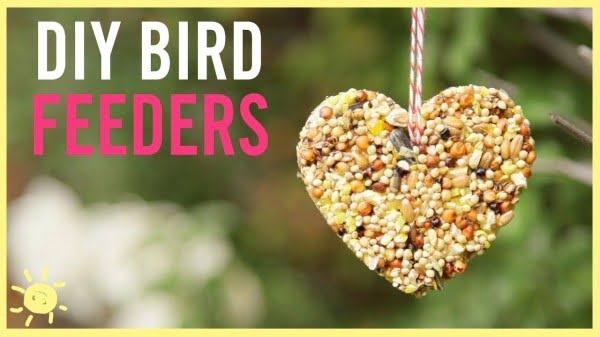 How to Make a Bird Feeder (Easy Kids Craft!)