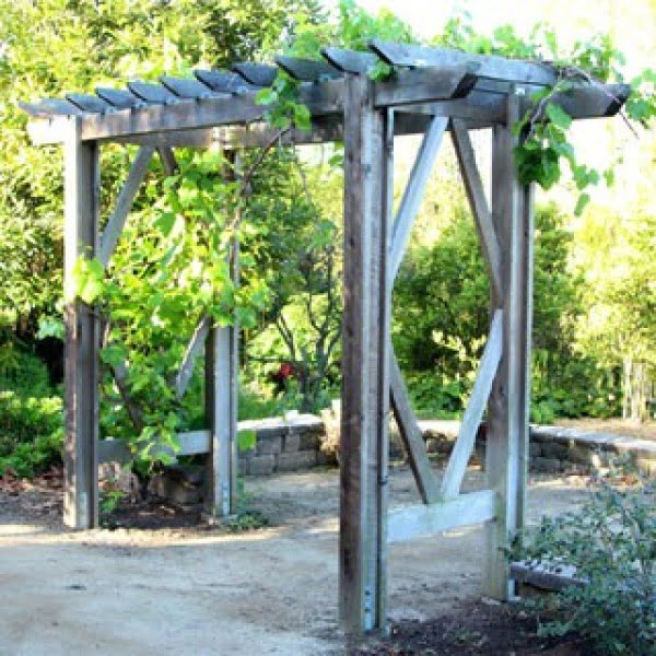DIY Grape Arbor ( Simple DIY Pergola ): Free Building Plan