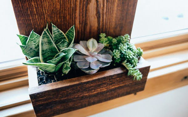 How to Make a DIY House Number Planter Box