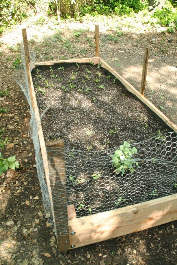 how to build a wooden raised bed planter box