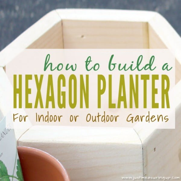How to Build a Hexagon DIY Planter Box for an Indoor Garden
